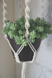 planthanger-683x1024