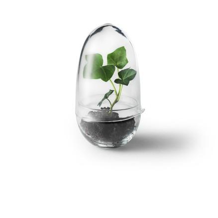 terrarium-oeuf-small-design-house-stockholm_1