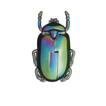 tire-bouchon-insectum-doiy-irise