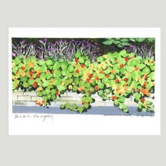 Limited_Prints_Nasturtium_Wall